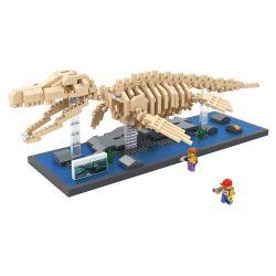 Nanoblock Jurassic World Loz 9024 Mosasaurus dinosaur Skeletons Xếp hình hóa thạch thằn lằn biển Mosasaurus 740 khối