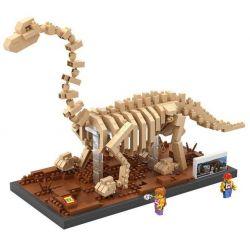 Loz 9028 Nanoblock Jurassic World Brachiosaurus Fossil Dinosaur Skeletons Xếp hình Hóa Thạch Khủng Long Cổ Dài Brachiosaurus Fossil 660 khối