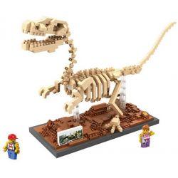 Loz 9026 Nanoblock Jurassic World Velociraptor Fossil Dinosaur Skeletons Xếp hình Hóa Thạch Khủng Long Chim Ăn Thịt Tốc Độ Velociraptor Fossil 660 khối